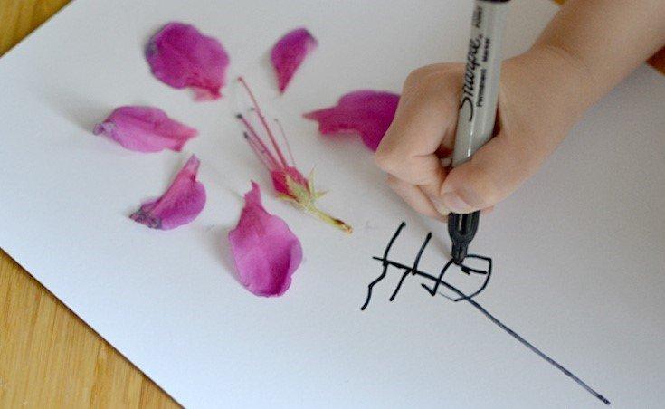 Creative Petal Art