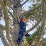 Child in Tree at daycare